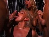 Group cum compilation