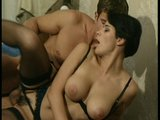 Pussy trumps the newspape...