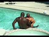 Pool Menage A Muscles - Pacific Sun Entertainment